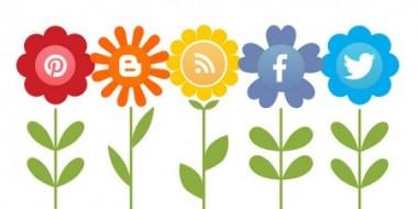 social_icon-e1370871481627